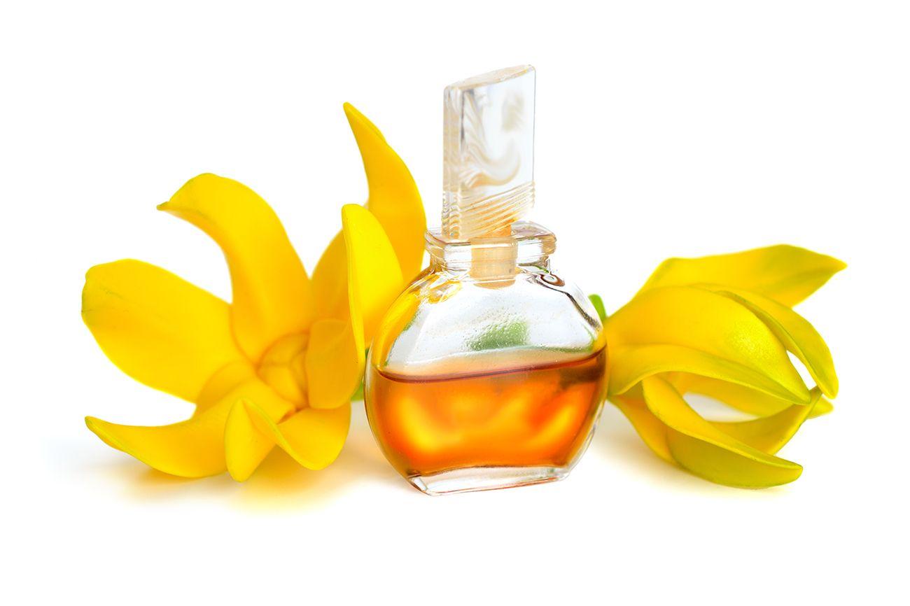 aceite de ylang-ylang
